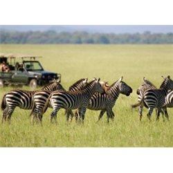 Solo Tanzania