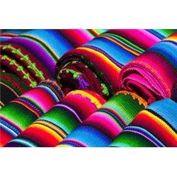 Arco Iris Mexicano 2019